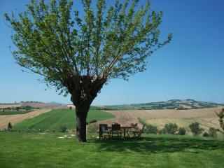 Charming 3 bedroom Vacation Rental in Mondavio - Mondavio vacation rentals