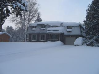 Ski the Blue Mountains, Bruce Trail or Georgian Trail!! - Meaford vacation rentals
