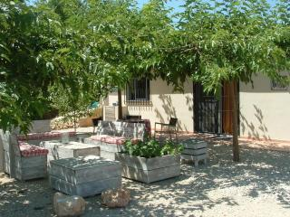 Enjoy the peaceful hills and marvelous views of the Albaida Valley - Valencia vacation rentals