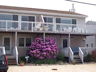 Long Beach Island bay view - Harvey Cedars vacation rentals