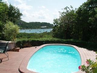 Haiku-Peacefull 3 bdrm villa -Level floor plan-Pool-Spa-Great family villa - Virgin Islands National Park vacation rentals