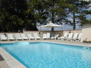 House (gite) for 12  with pool in Charente,France. - Aubeterre-sur-Dronne vacation rentals