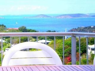 Paradise Revisited - 4 A/C bedroom villa-large pool and private strolling paths. - Virgin Islands National Park vacation rentals