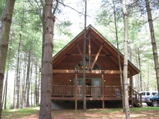 Cabins at Pine Haven-Roaring Rapids Cabin - Fayetteville vacation rentals