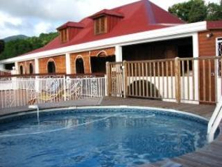 Let's Spend Our  Holidays In A House of Character - Saint-Claude vacation rentals