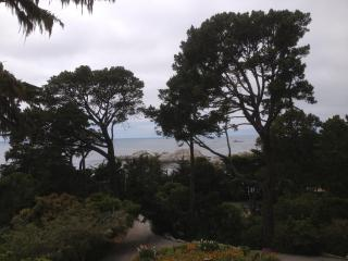 Dramatic Ocean Views - Preeminent Regeneration!! - Carmel vacation rentals