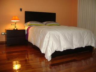 Lima Apartment for Rent - Lima Region vacation rentals