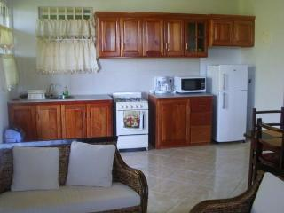Nice 2 bedroom Apartment in Roseau - Roseau vacation rentals