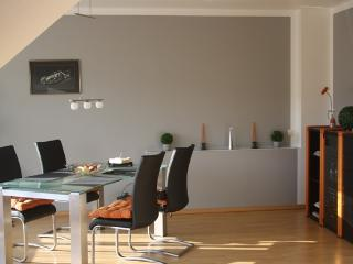 Holiday Flat 2.5 room on the sunny side of the Rhine - Bad Hönningen vacation rentals