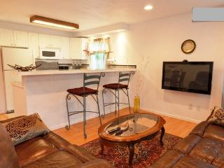3 BR Quiet, Bright Near Gaslamp, Zoo, Petco Park - Pacific Beach vacation rentals
