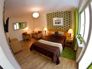 Apartament Piastowski Wroclaw - Wroclaw vacation rentals