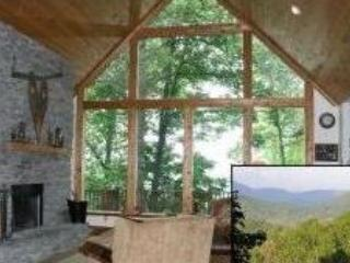 Wonderful Mountain Cabin with Views - Mountain Home with Awesome Mountain View Outside of Asheville NC - Waynesville - rentals