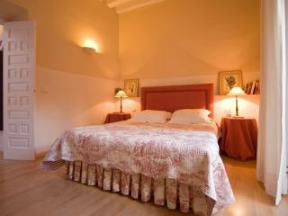 Bamberg Duplex Terrace, Santa Cruz district 5 pax - Seville vacation rentals