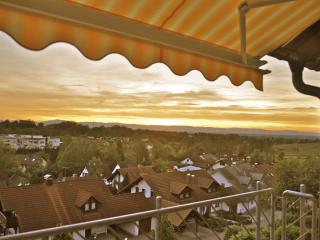 4-Star Apartment with Black Forest & Alsace Views - Sulzburg vacation rentals