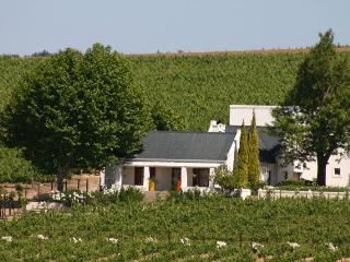 Tarentaal Cottage - Stellenbosch vacation rentals