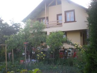 House for rent in beautiful maramures - Sighetu Marmatiei vacation rentals