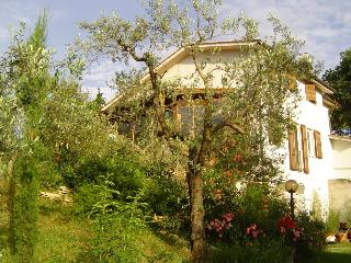 Charming Villa  with smimmingpool near Rome - Magliano Sabina vacation rentals