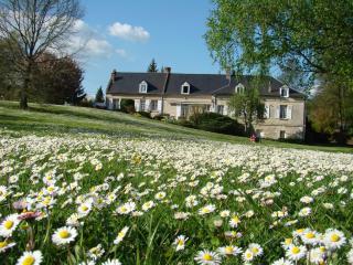 LE MOULIN DE LAVAL ( Chambres d'hôtes ) - Cuisy-en-Almont vacation rentals