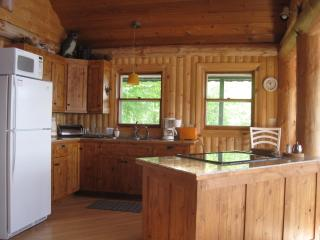 THE   LAKEHAUS - Upson vacation rentals