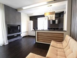 Three Bedroom VIP apartment - Kiev vacation rentals