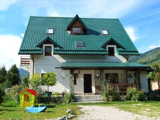 7 bedroom Villa with Internet Access in Transylvania - Transylvania vacation rentals