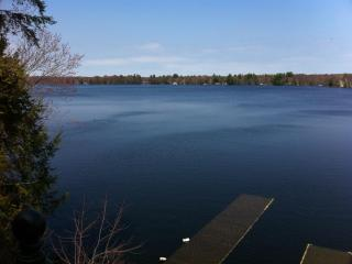 Muskoka- Lake Muskoka, Gorgeous Waterfront Cottage - Bracebridge vacation rentals