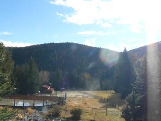 Hitching Post Log Cabin - Kelowna vacation rentals