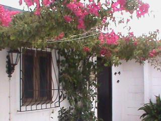 1 bedroom Condo with Internet Access in Vila Nova de Gaia - Vila Nova de Gaia vacation rentals