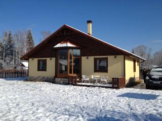 Wonderful Chalet with Mountain Views and Fireplace - Samokov vacation rentals