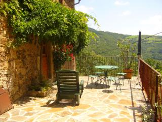 gite original beau et calme in large wooden domain - Saint-Sernin-sur-Rance vacation rentals