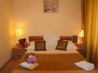 Sunny apartment Downtown city with beautiful view - Bucharest vacation rentals