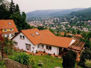 Vacation Apartment in Heidelberg - 377 sqft, comfortable, central, quiet (# 3857) - Weinheim vacation rentals