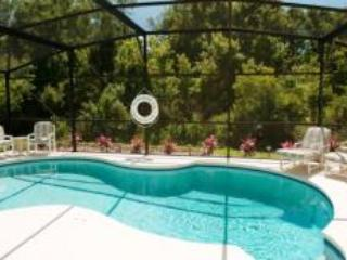 Pool - Beautiful 5 bedroom/3 villa - FREE POOL & TUB HEAT - Davenport - rentals