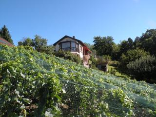 Lutry with a bird's view of Lausanne / Lake Geneva - Lutry vacation rentals
