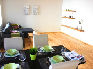 Great apartment in down town Reykjavik, sleeps 4 - Budir vacation rentals