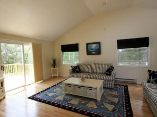 Bright East Sandwich Farmhouse Barn rental with A/C - East Sandwich vacation rentals