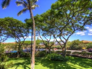 Maui Vista 2220 W34730646-01 - Image 1 - Kihei - rentals
