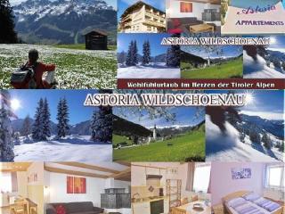 Appartement Astoria Rosskopf Tyrol Wildschönau Austria Kitzbühl Alps - Achenkirch vacation rentals