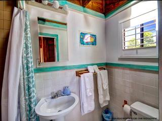 White Sands 1 Sea Turtle - Clearwater Beach vacation rentals