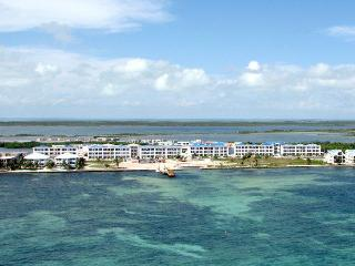 Belize Condo just $95 US per night - San Pedro vacation rentals