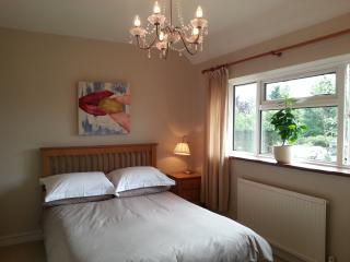 Medlar House ; a genuine alternative to hotels for groups or families - Farnham vacation rentals