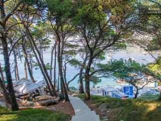 Vacation house Cavtat(OLD TOWN CAVTAT) 100 m from sea,4+1 - Cavtat vacation rentals