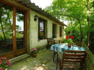 Domain Saint Blancard- low priced gites in the Midi Pyrenees - Saint-Blancard vacation rentals