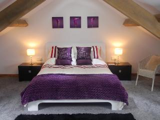 Luxury 5* barn with 35 acres of National Park land - Llandeilo vacation rentals