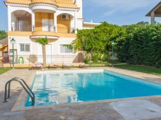 Villa Anavyssos swimming pool and garden - Attica vacation rentals