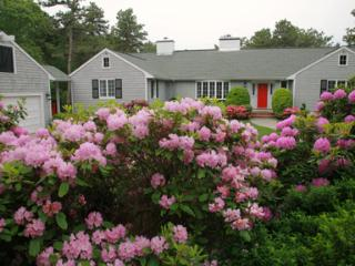 Bright House with Internet Access and Dishwasher - Osterville vacation rentals