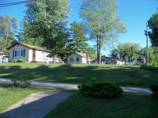 Chippewa Lake Cabins On The Hill - Chippewa Lake vacation rentals