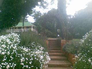 Robin's Nest - Overberg vacation rentals