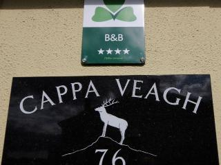 Cappa Veagh B&B - Galway vacation rentals