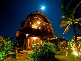 2 Bedroom Villa near Pererenan beach Canggu - Seminyak vacation rentals